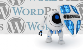 I will do excellent WordPress SECURITY