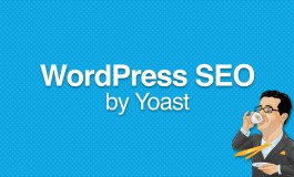 I will do Yoast WordPress plugins