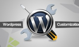 I will fix and customize your WordPress