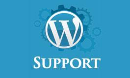 I will do 30 mins Wordpress Skype Consultation