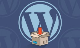I will setup and install WordPress along with the essential plugins