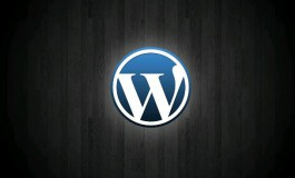 I will install and setup WordPress securely 12hrs