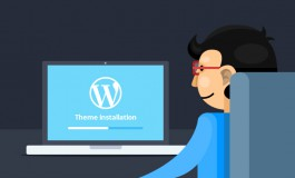 I will setup Wordpress Theme like Demo