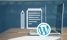 I will fix wordpress errors and customization