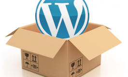 I will install, modify, fix or customize WordPress within 24 hrs