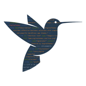 bird-code-min